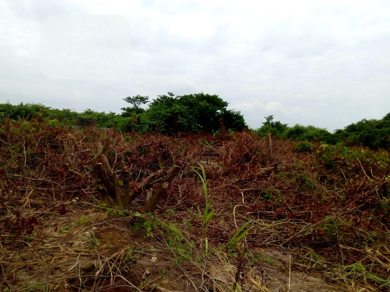 Half Plot of Land for Sale at Ibeshe   Land & Plots For Sale for sale in Ikorodu, Lagos State, Nigeria