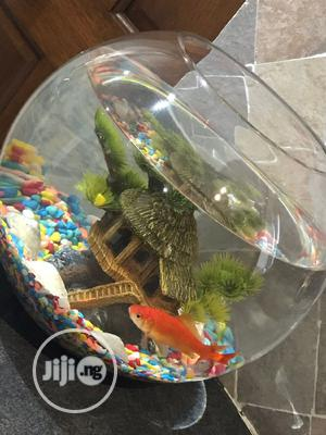 Fish Bowl Kit | Pet's Accessories for sale in Lagos State, Ikoyi