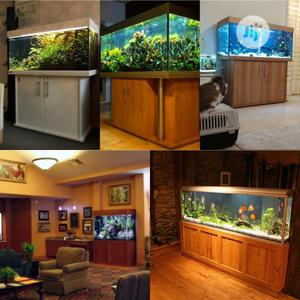 Aquariums Of All Kinds | Fish for sale in Lagos State, Ikoyi