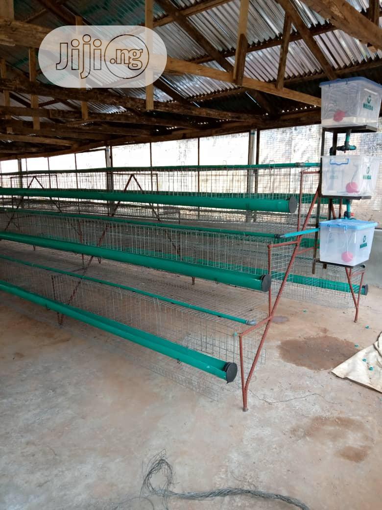 Battery Cage 95birds, 120birds 2000 Bird Are Available,