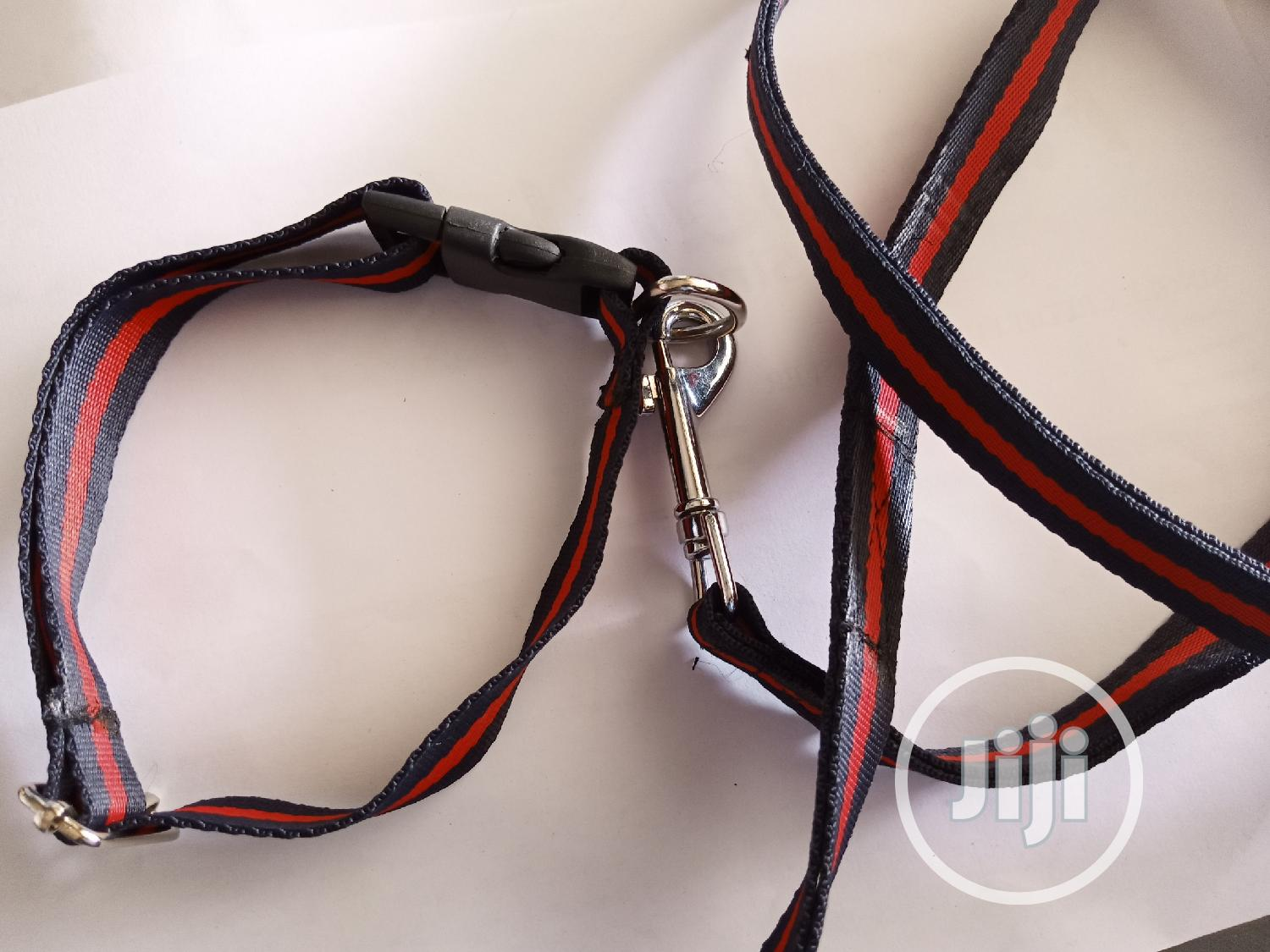 Archive: Puppy Collar & Leash Set