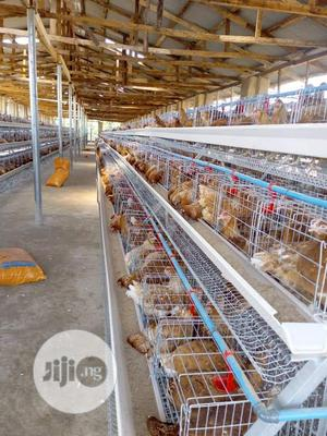 Poultry Cages In Ibadan | Farm Machinery & Equipment for sale in Abuja (FCT) State, Wuse