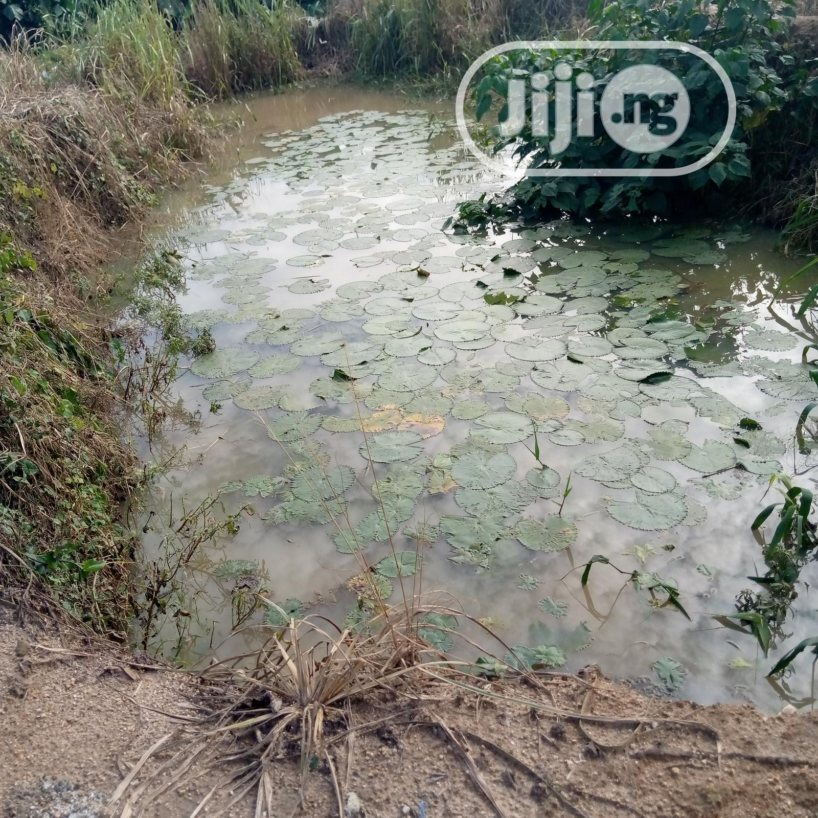 Earthen Pond | Farm Machinery & Equipment for sale in Kubwa, Abuja (FCT) State, Nigeria