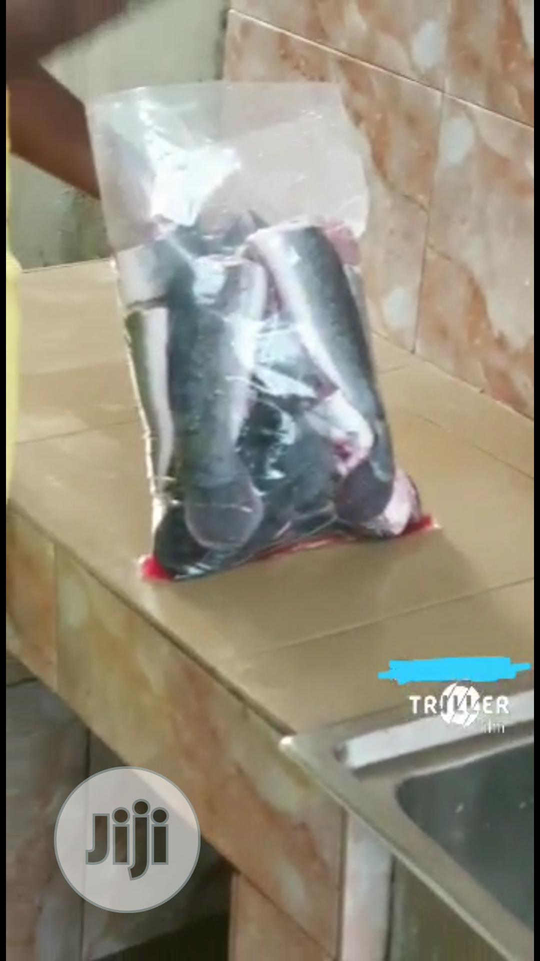 Well Cleaned Catfish For Sale   Livestock & Poultry for sale in Ajah, Lagos State, Nigeria