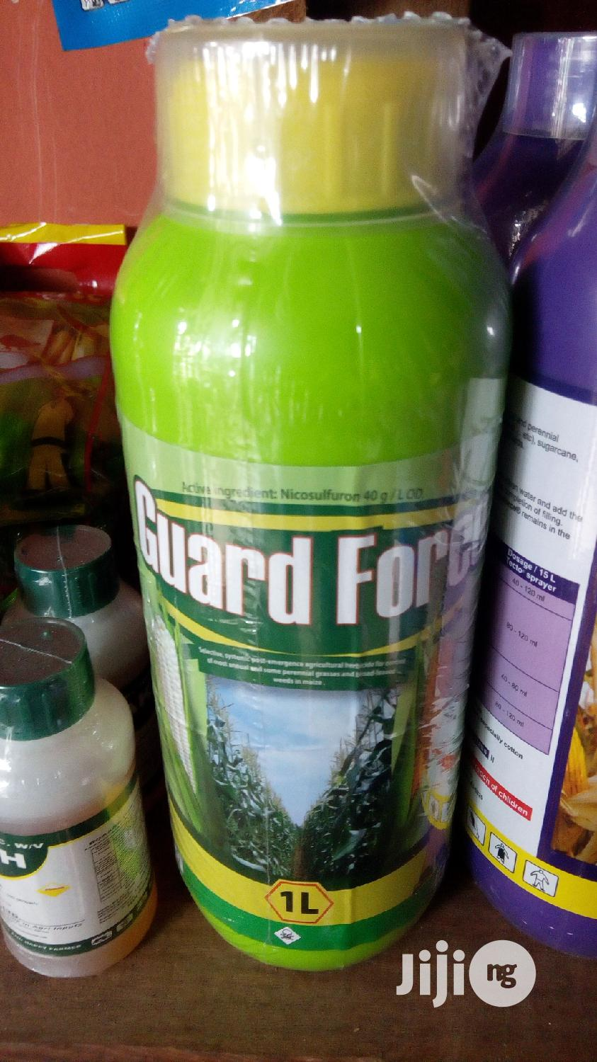 Archive: 1L Guard Force (Post Emergece For Corn)