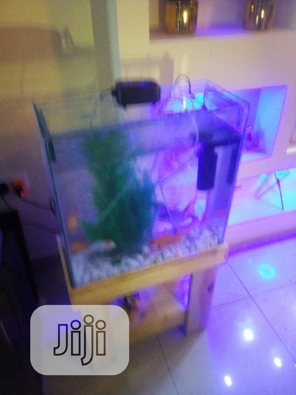 Aquarium Fish Tank | Fish for sale in Surulere, Lagos State, Nigeria