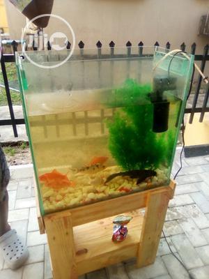 Mini Aquarium   Fish for sale in Lagos State, Surulere