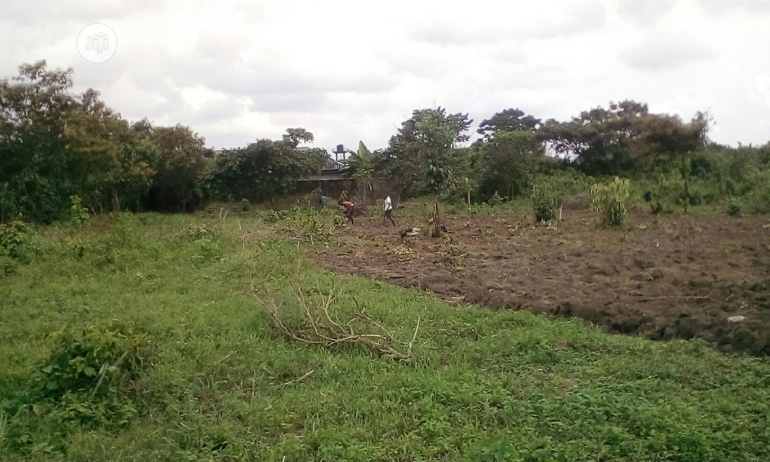 Archive: Urgent Sale: Half Plot, One or Two Plots of Land.