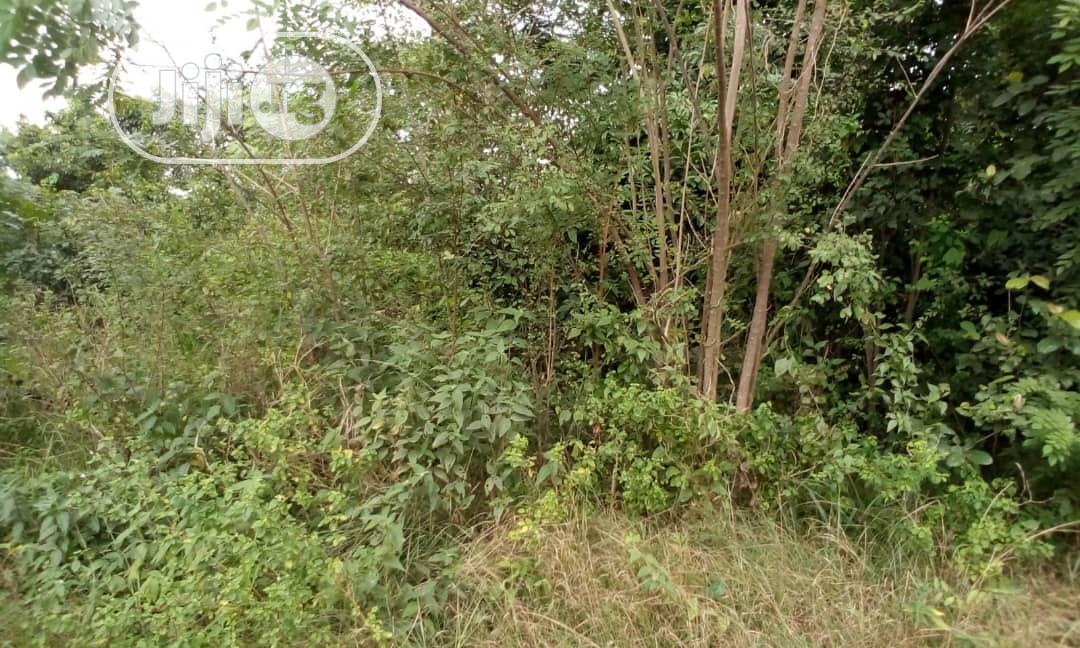 2 Plots of Land Available for Sale
