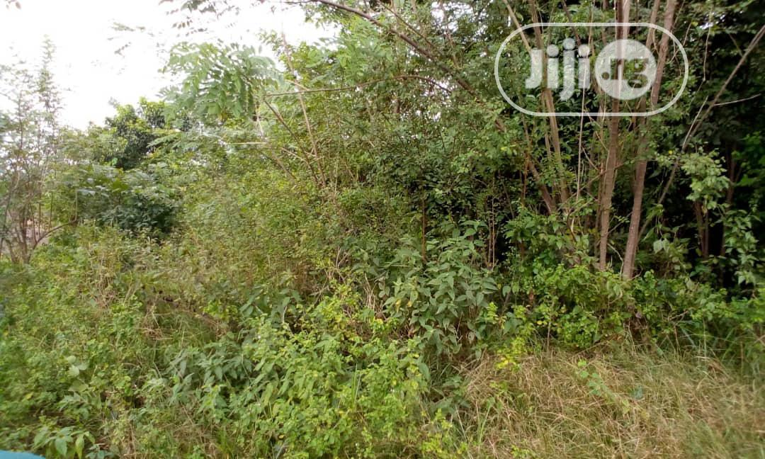 2 Plots of Land Available for Sale | Land & Plots For Sale for sale in Osogbo, Osun State, Nigeria