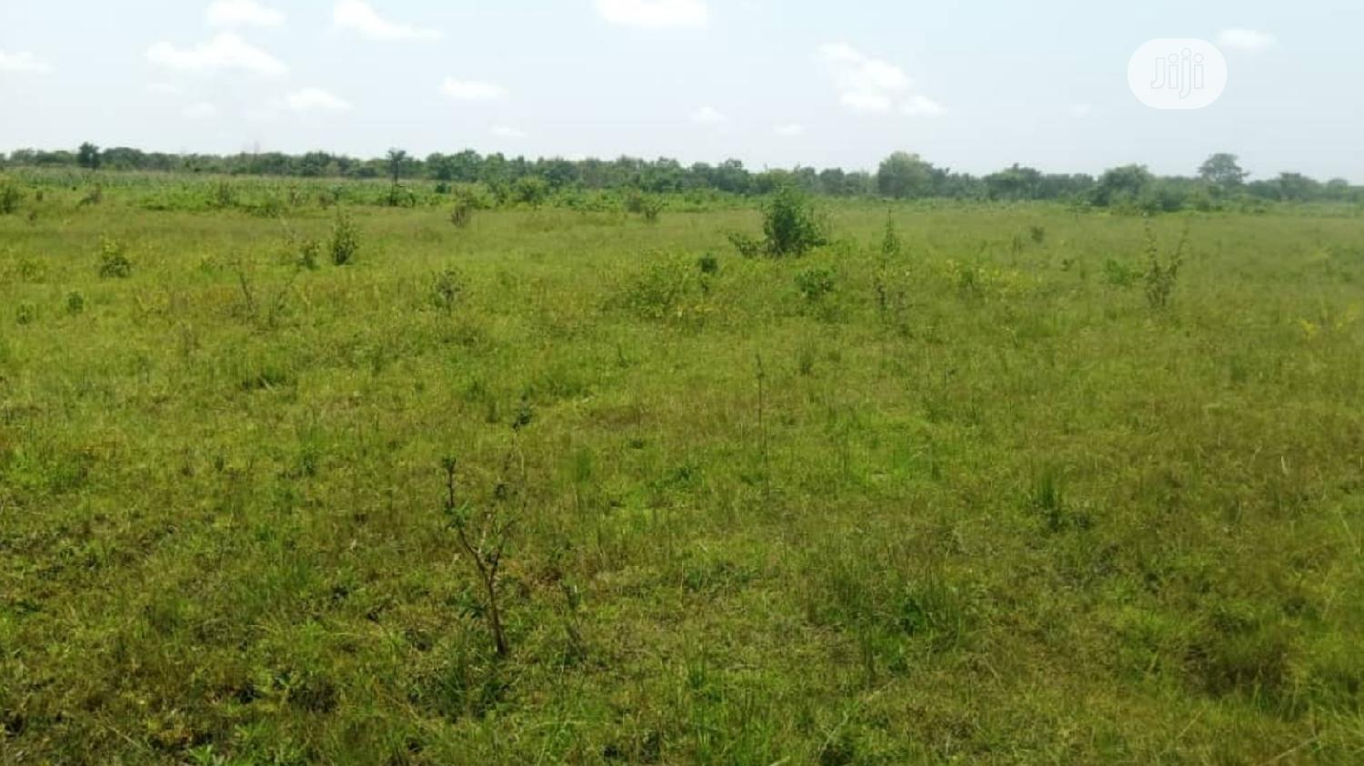 5000 Acres Of Land Inahin Village Komu Town Itesi For Sale,