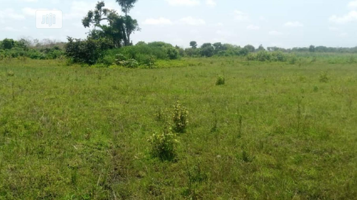 5000 Acres Of Land Inahin Village Komu Town Itesi For Sale, | Land & Plots For Sale for sale in Itesiwaju, Oyo State, Nigeria