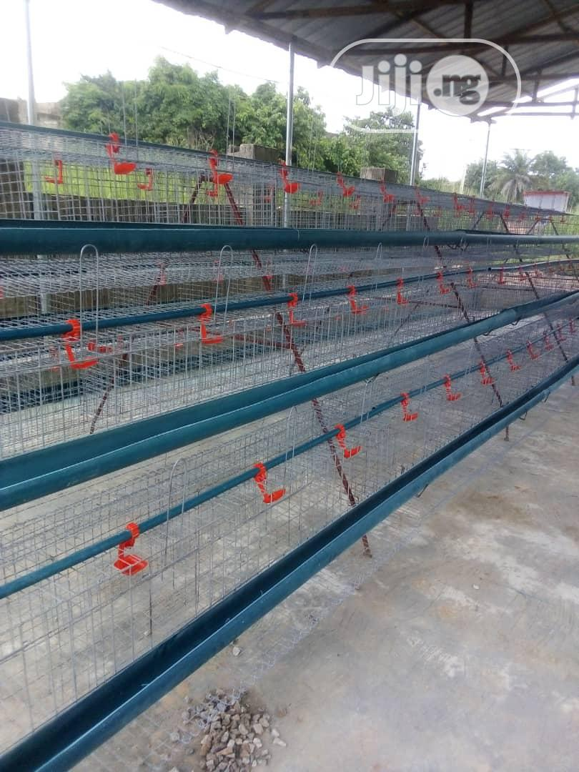 New Battery Cage For Birds With Durable Mesh Wire
