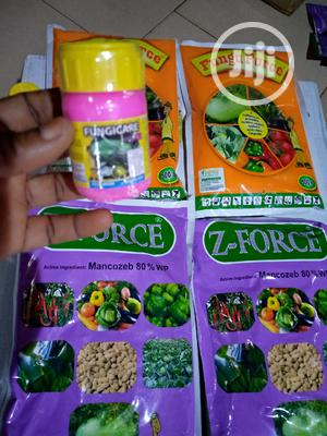 Seeds, Agrochemicals, Irrigation, Farm Input | Feeds, Supplements & Seeds for sale in Oyo State, Akinyele