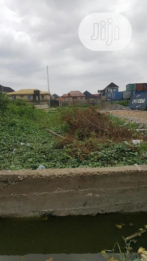2 Plots of Land Along Off Ago Palace Way Isolo for Sale | Land & Plots For Sale for sale in Lagos State, Isolo