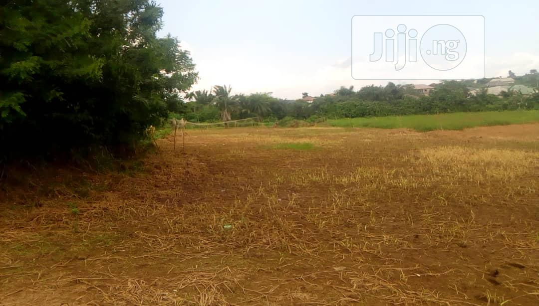 100 Acres At Alamala, 400k Per Acre