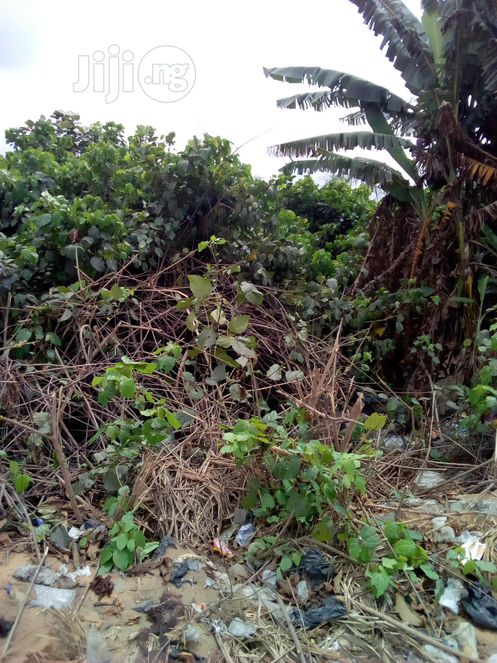 Land Facing Badagry Expressway | Land & Plots For Sale for sale in Ojo, Lagos State, Nigeria