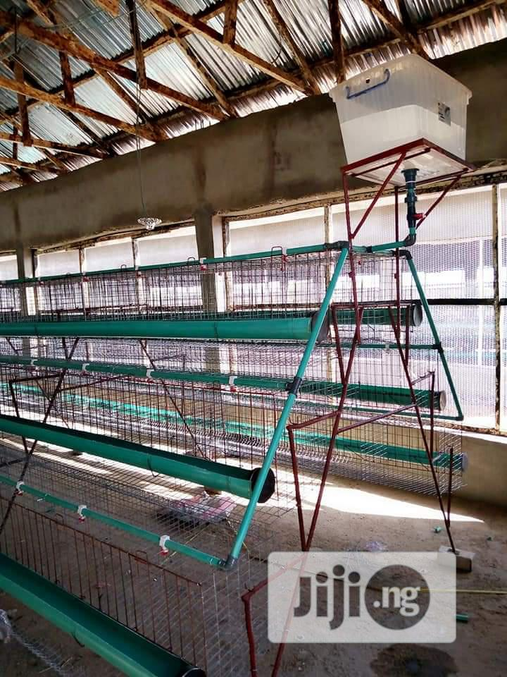 Battery Cage For Layers Using Galvanize Materials
