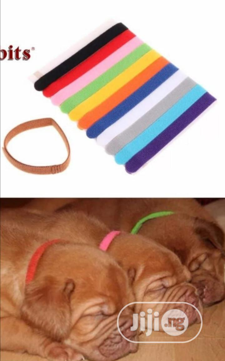 12pcs Colorful Puppy Collars Identification Mark