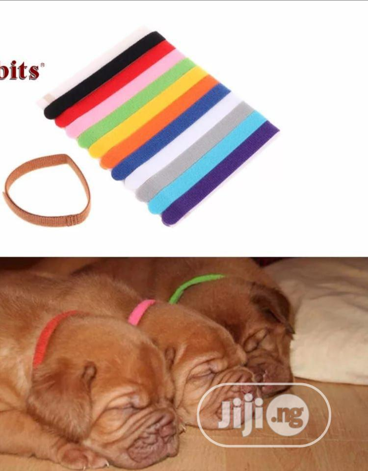 12pcs Colorful Puppy Collars Identification Mark | Pet's Accessories for sale in Abeokuta North, Ogun State, Nigeria