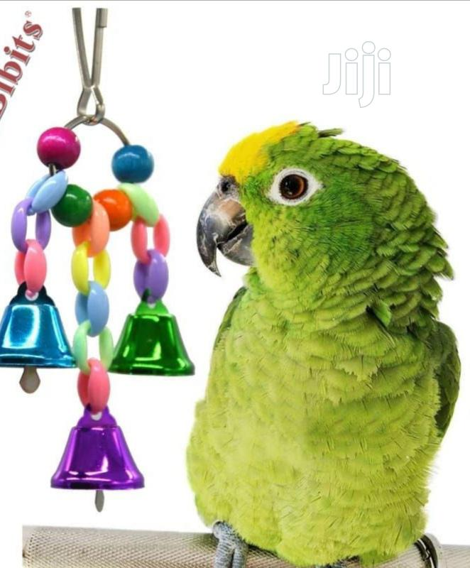 Hanging Toy | Pet's Accessories for sale in Abeokuta North, Ogun State, Nigeria