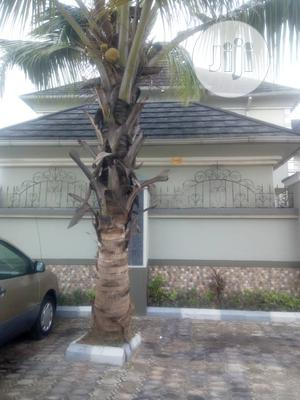 Semi Detached Four Bedroom Duplex For Rent | Houses & Apartments For Rent for sale in Lagos State, Amuwo-Odofin