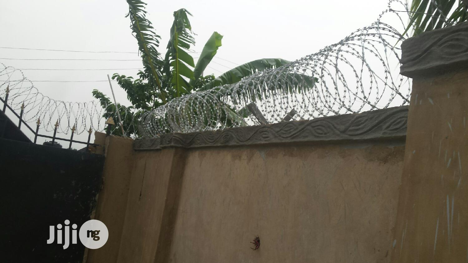 Archive: Electric Fencing And Bieber Wires