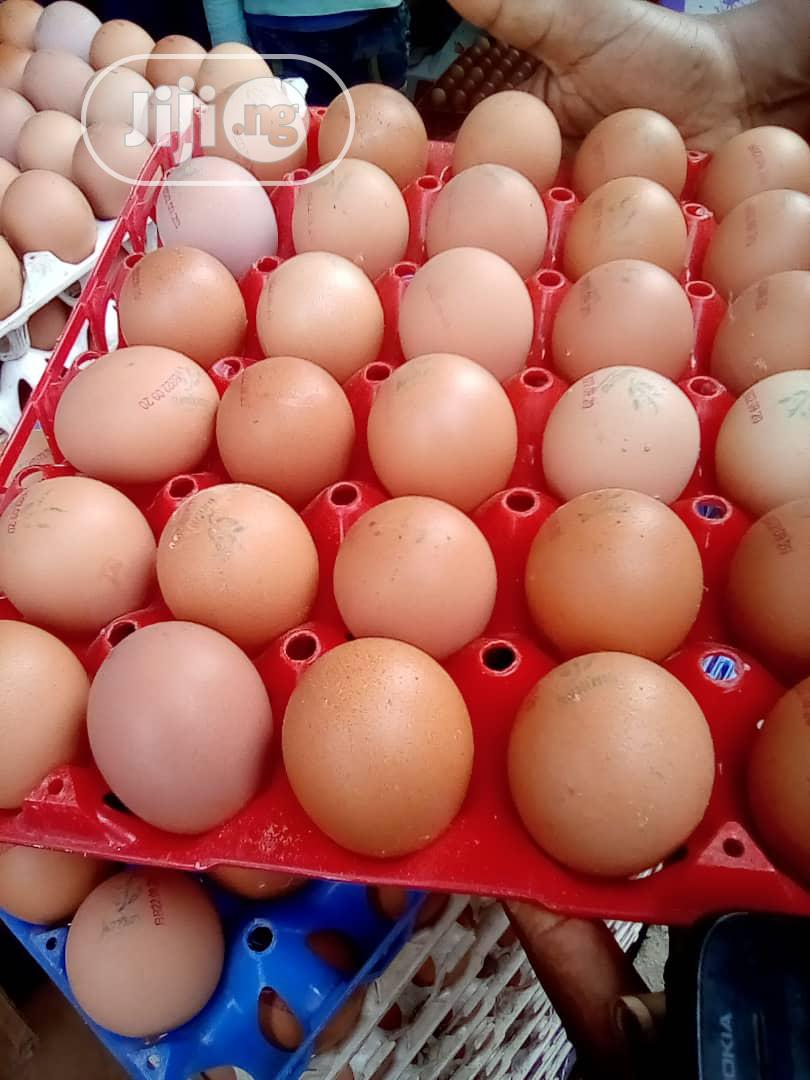 Archive: Fresh Eggs For Sale