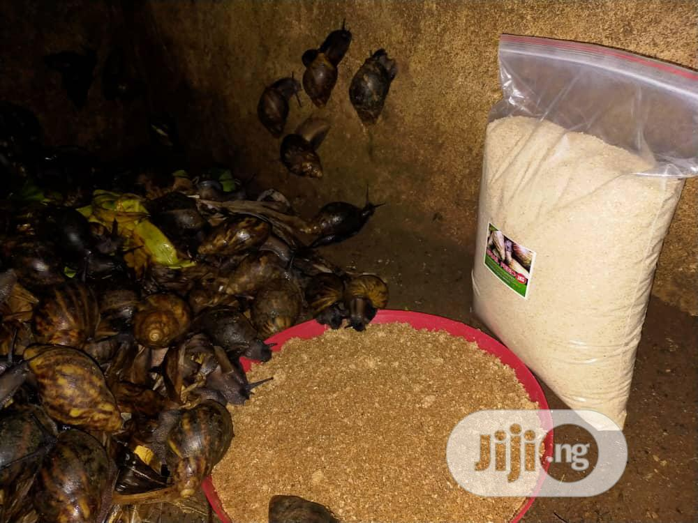 Snail Feed | Feeds, Supplements & Seeds for sale in Benin City, Edo State, Nigeria