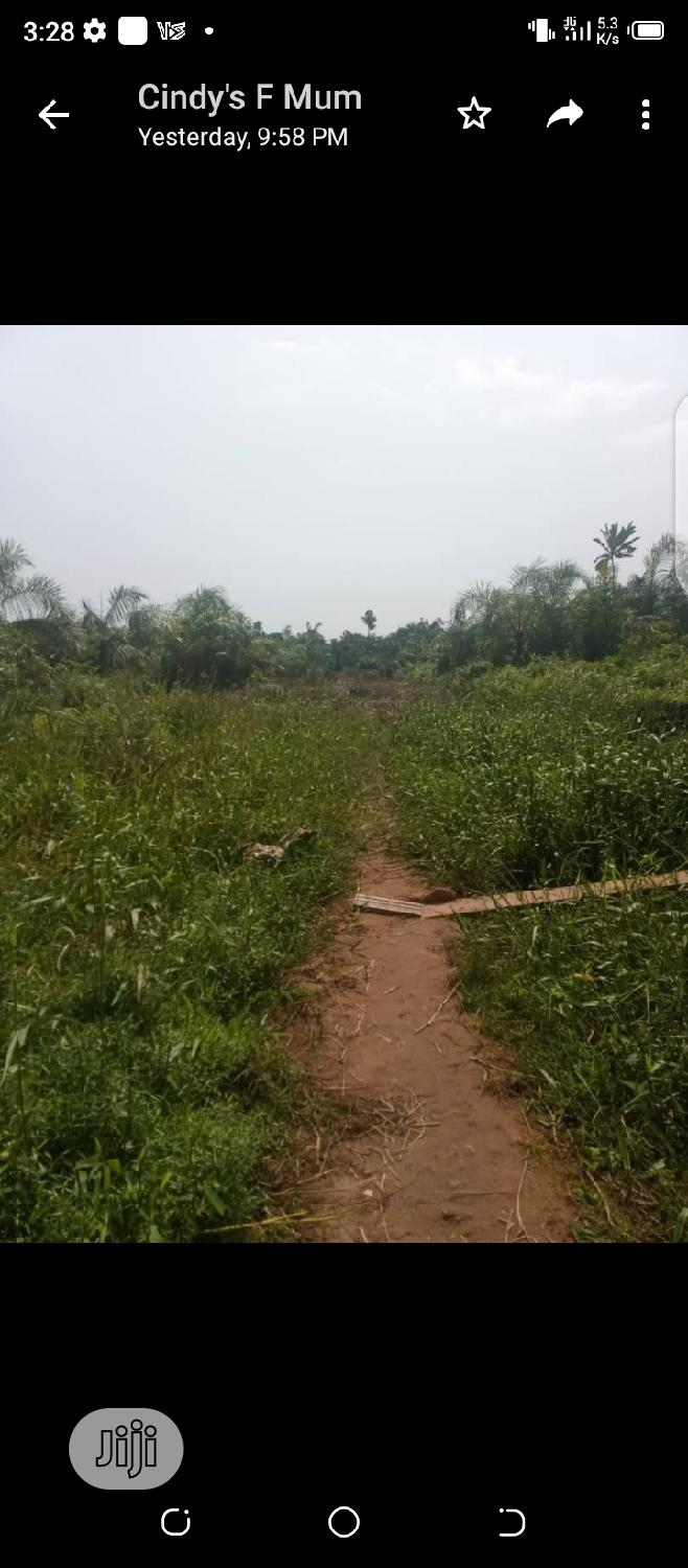 Plots of Land for Sale | Land & Plots For Sale for sale in Ojo, Lagos State, Nigeria