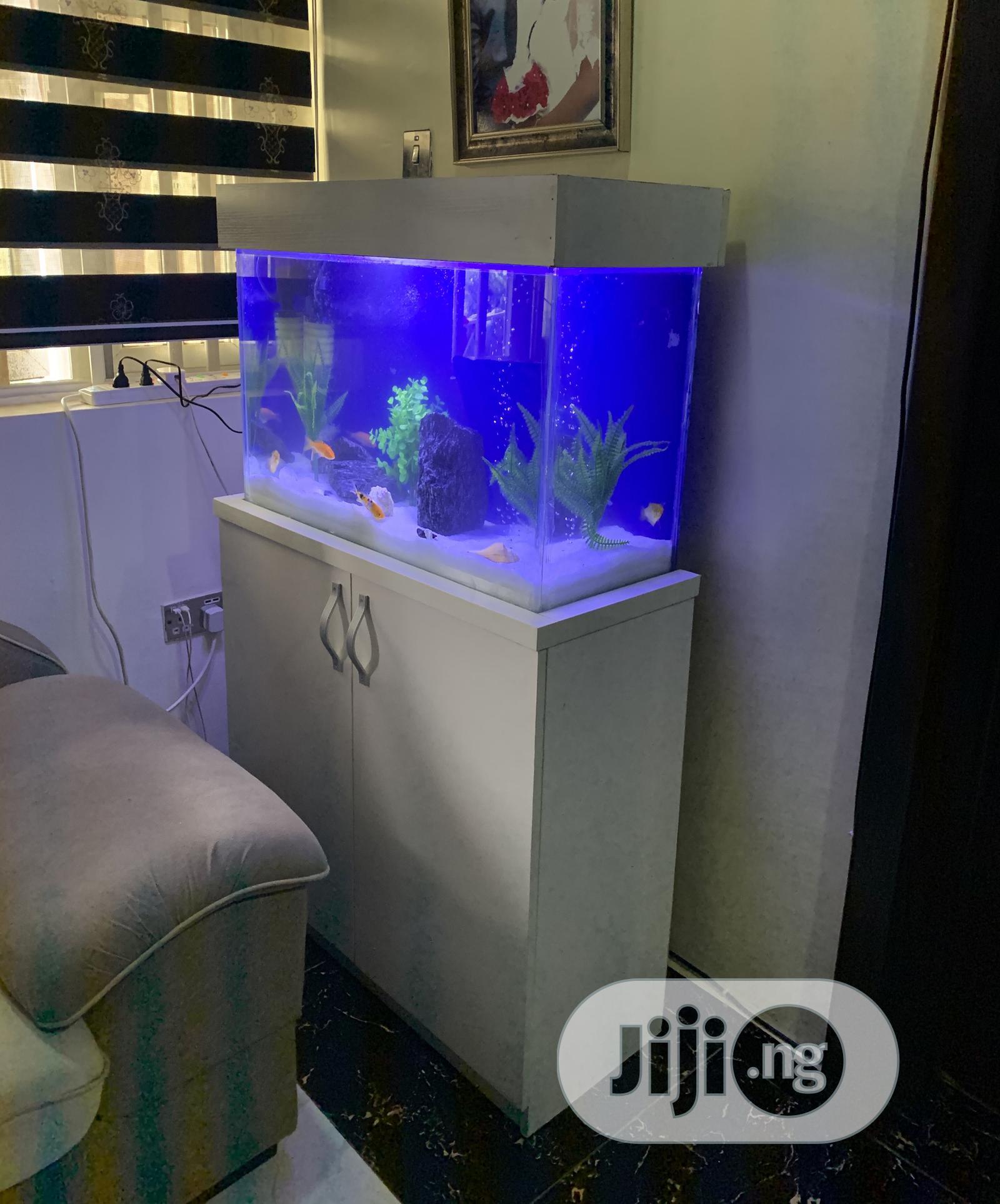 30inches Standing Aquarium