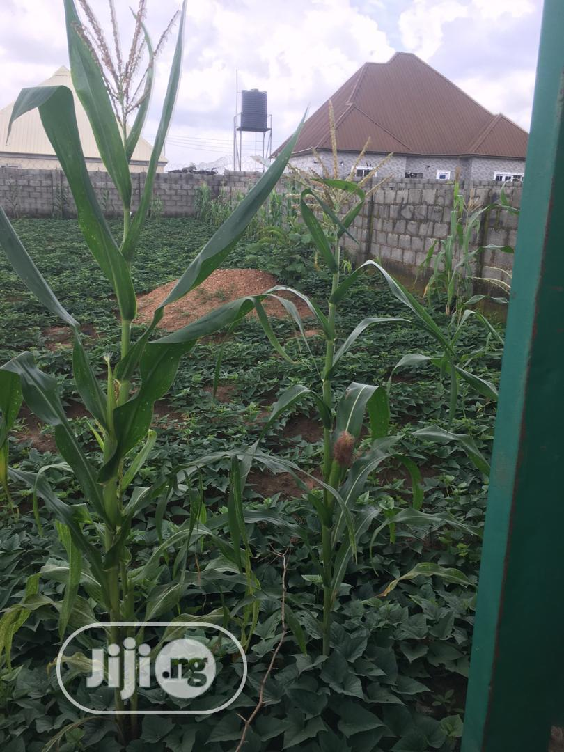 Welcome To Good Land   Land & Plots For Sale for sale in Kubwa, Abuja (FCT) State, Nigeria