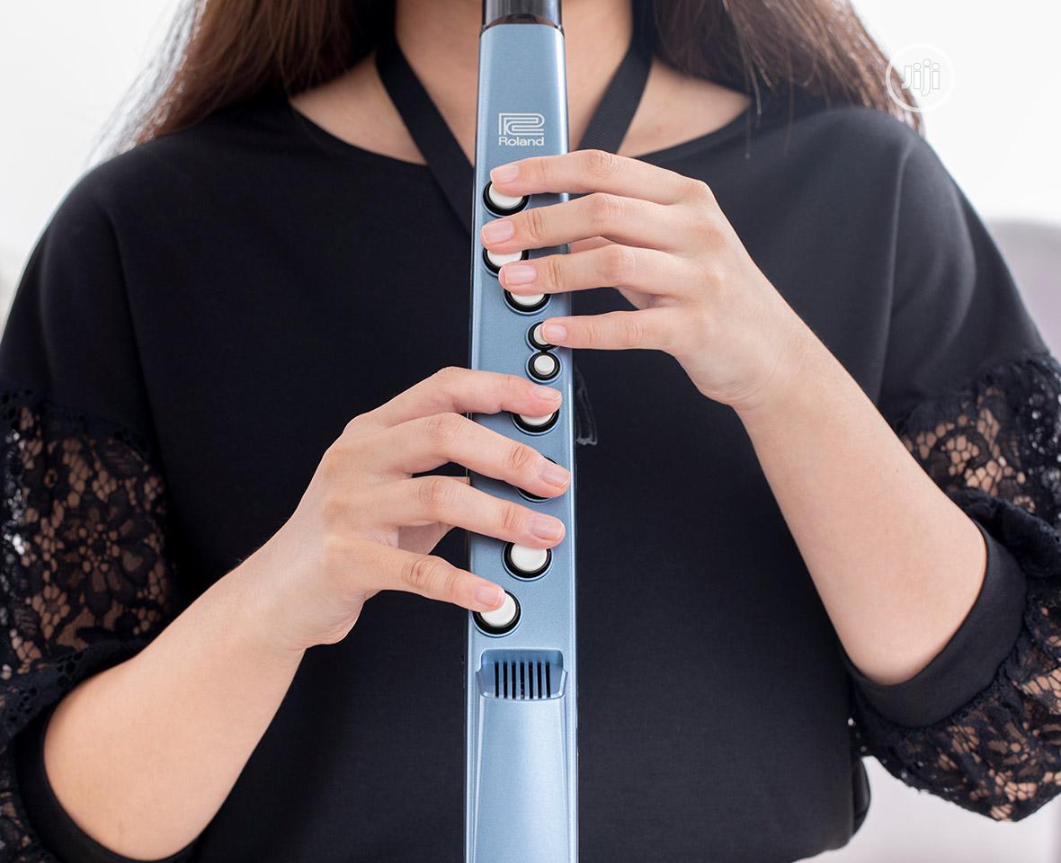 Roland Aerophone Mini AE-01 Digital Sax / Wind Instrument