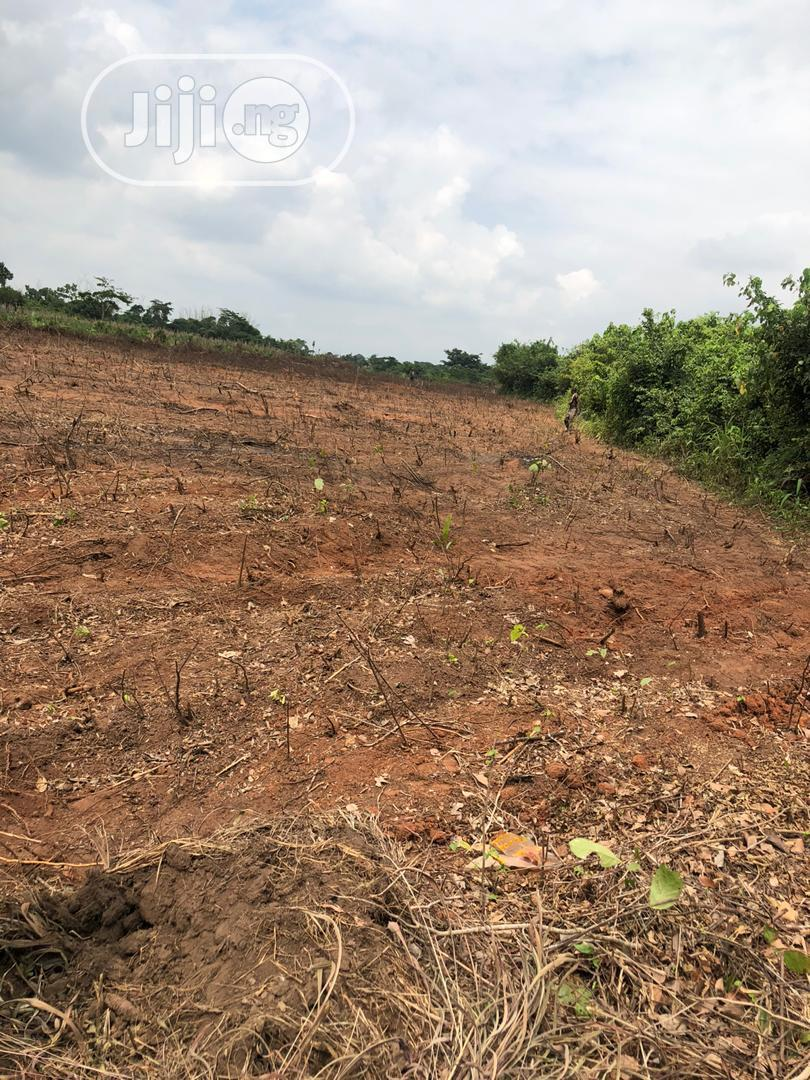 Farming Land For Sale Mowe | Land & Plots For Sale for sale in Obafemi-Owode, Ogun State, Nigeria