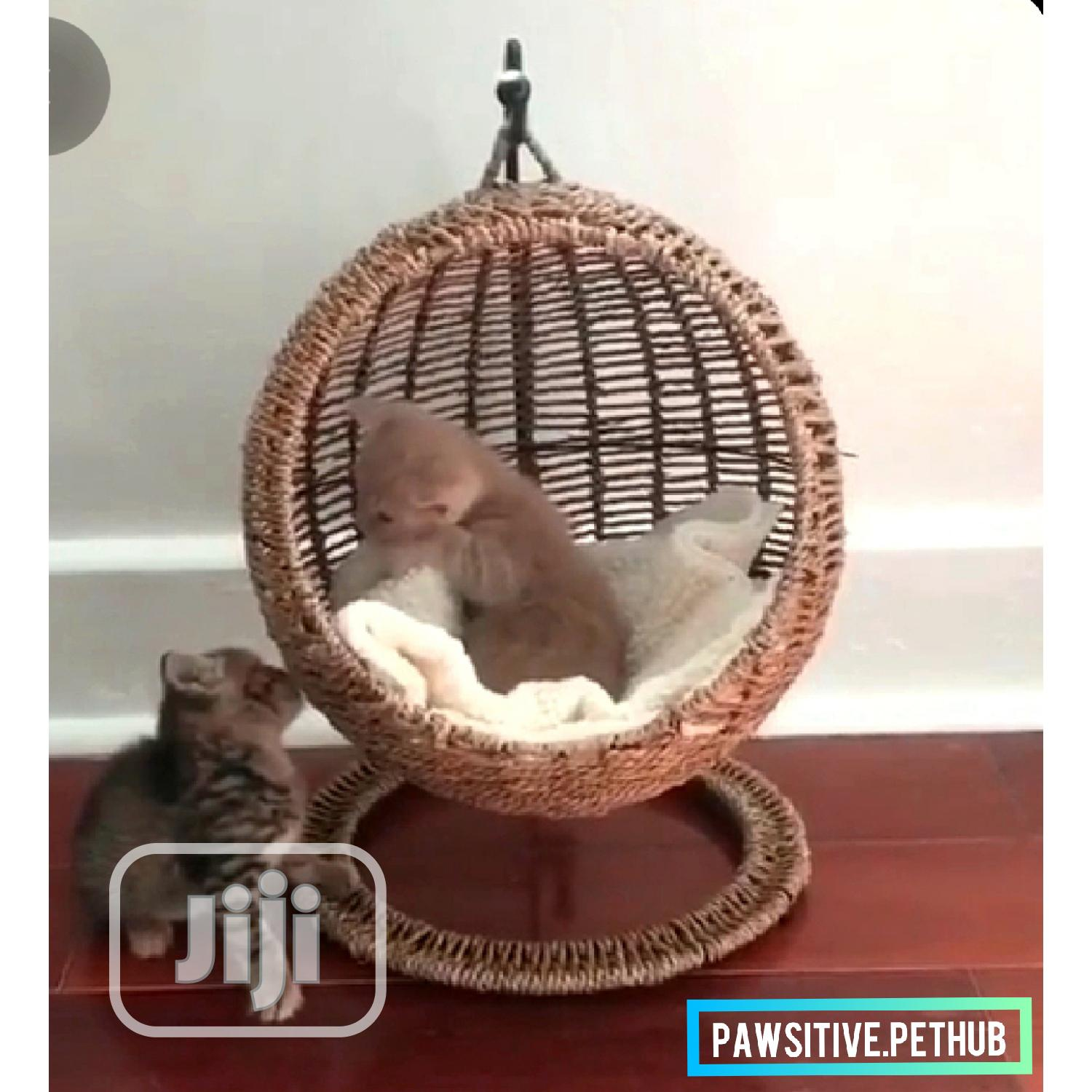 Archive: Artistic Tyre Beds And Hammocks For Puppies,Cats And Bunnies