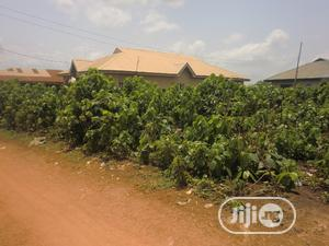 Apete Residential Property | Land & Plots For Sale for sale in Oyo State, Ido