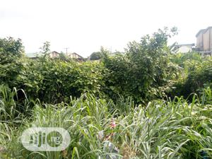 Two Plot Of Land Wit C Of O.On Sango Expres.Opp Gate Hotel | Land & Plots For Sale for sale in Lagos State, Alimosho
