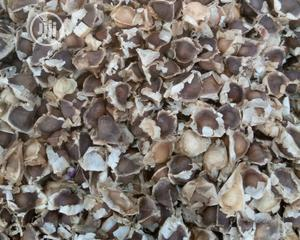 Moringa Seeds - 3k/Kg | Feeds, Supplements & Seeds for sale in Abuja (FCT) State, Kubwa
