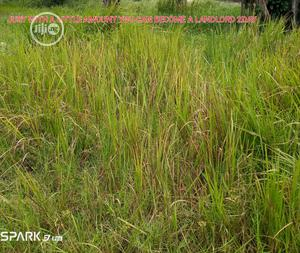 Lands for Sale in Shibiri, Close to Alaba Int'l Mkt, Lagos | Land & Plots For Sale for sale in Lagos State, Ojo