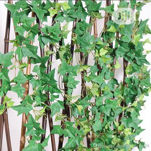 Decorate Fence With Creeping Wall Plants   Garden for sale in Lagos State, Ikeja