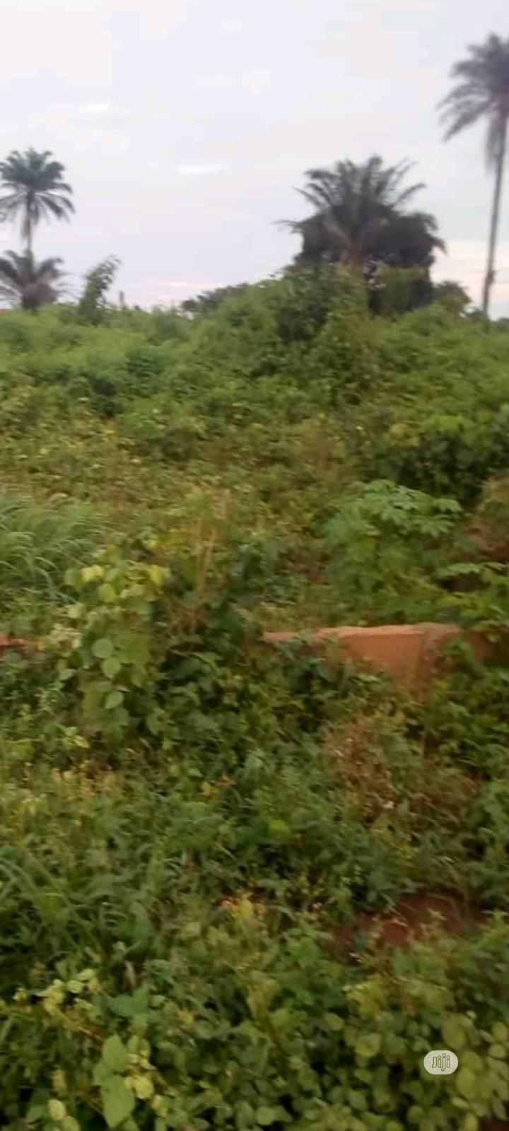 30 Plots Of Lands For Sale   Land & Plots For Sale for sale in Benin City, Edo State, Nigeria