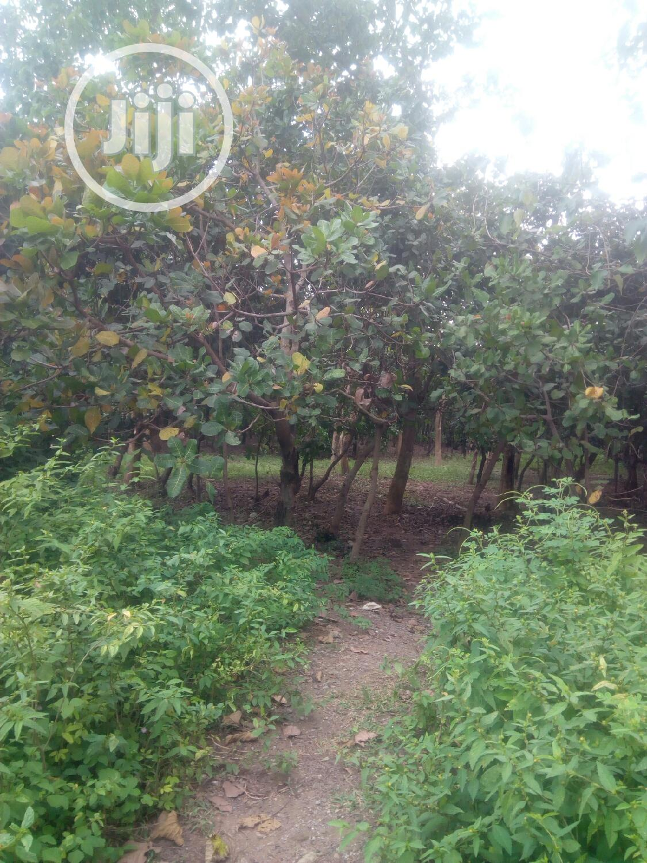 Joint Partnership Venture | Land & Plots For Sale for sale in Dakibiyu, Abuja (FCT) State, Nigeria