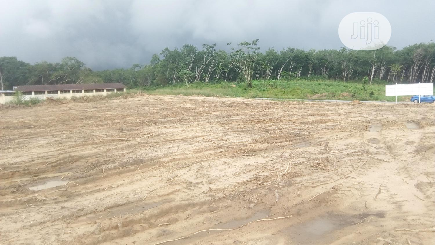 Dry Flat Table Plots Of Land For Sale!!! | Land & Plots For Sale for sale in Calabar, Cross River State, Nigeria
