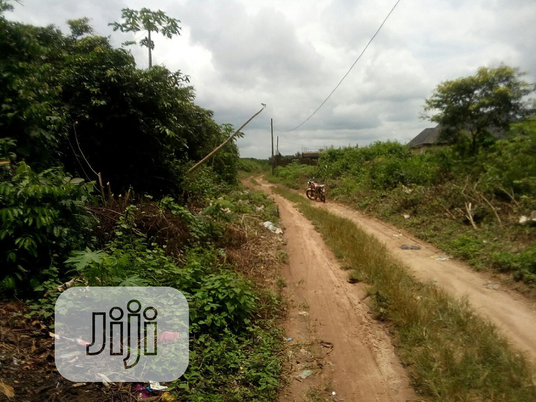 King's Eagle Estate Owerri Irete Malasyia Road   Land & Plots For Sale for sale in Owerri, Imo State, Nigeria