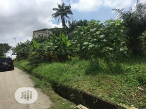 2 Plots of Table Land for Sale   Land & Plots For Sale for sale in Cross River State, Calabar