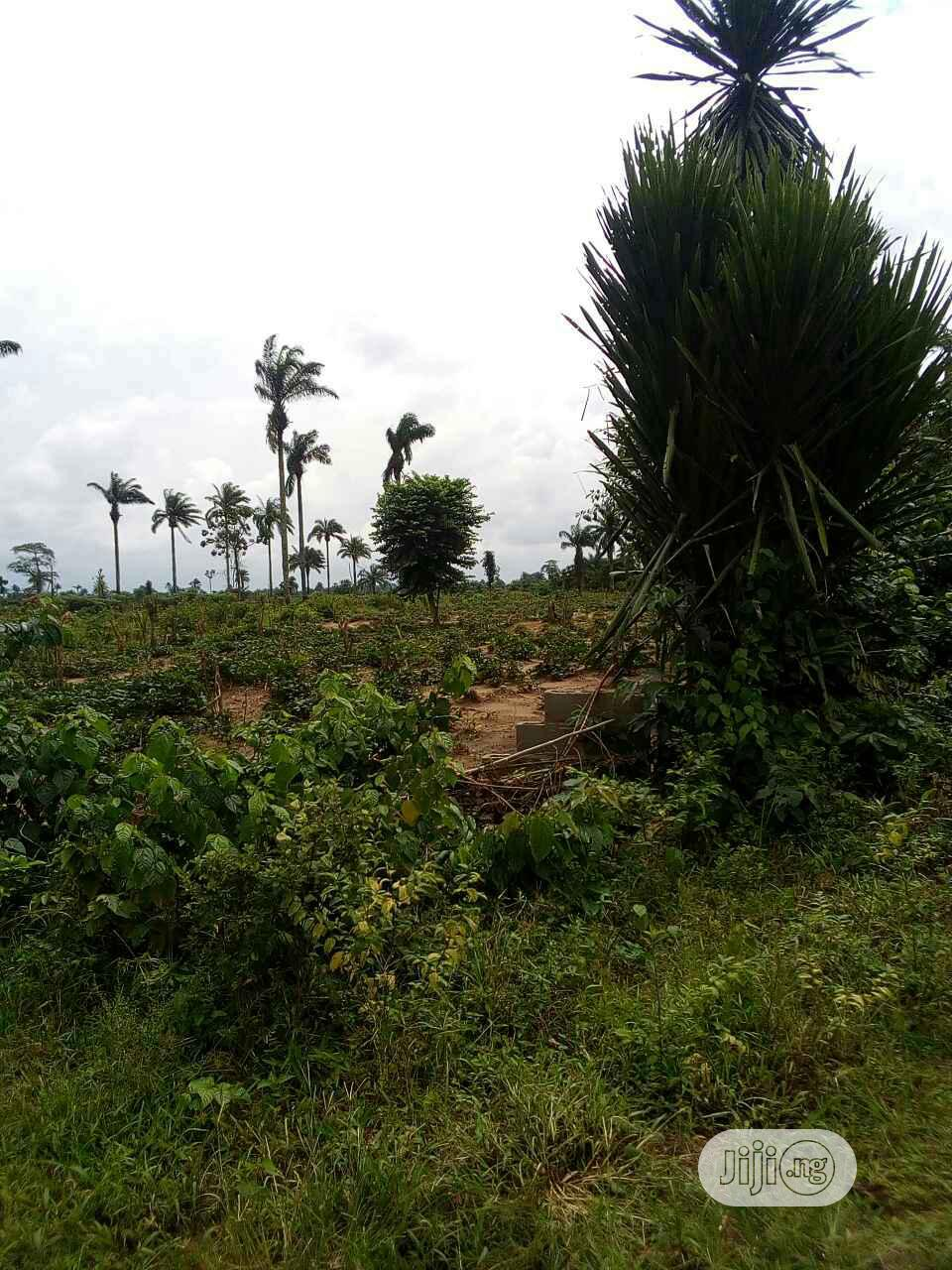 Eneka Police Checkpoint With Deed of Conveyance   Land & Plots For Sale for sale in Obio-Akpor, Rivers State, Nigeria