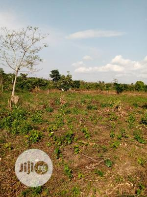 Available Land For Sale in Agbara (Ilase) | Land & Plots For Sale for sale in Lagos State, Amuwo-Odofin