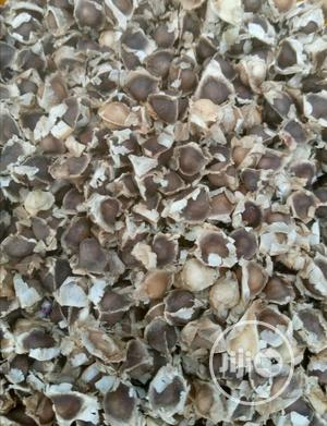 Moringa Seed,4k Per Kg | Feeds, Supplements & Seeds for sale in Lagos State, Apapa