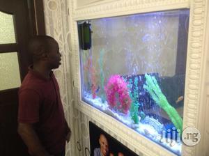 Aquarium In Wall | Fish for sale in Lagos State, Victoria Island