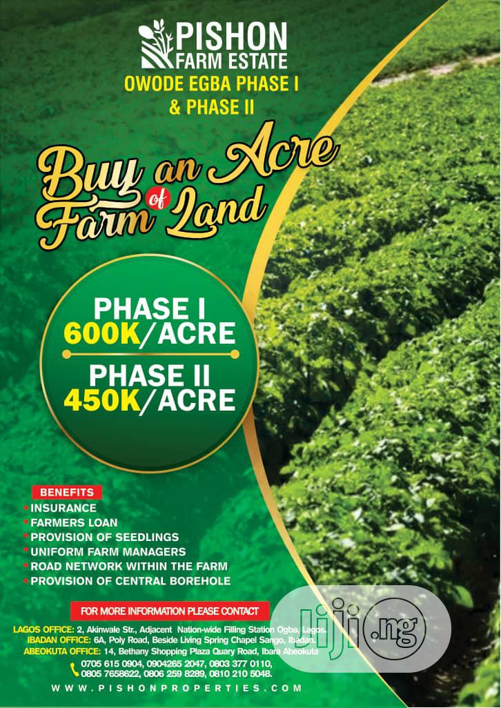 Acres of Farm Land at Owode Egba for Sale